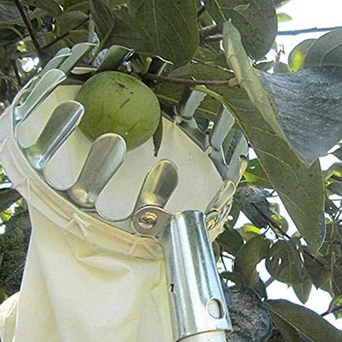 Delleu Recogedor de Frutas Cesto para la Cabeza o Herramientas de recolección de Frutas,Recogedor de Frutas para la Cosecha Recogiendo Manzana Cítricos Pera Melocotón