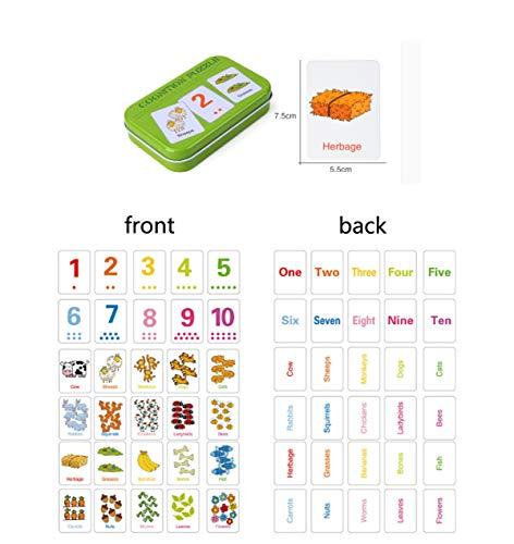 HorBous Tarjetas de Aprendizaje Alfabeto Números Colores Formas Animales para Niños ( Inglés ) (Rojo + Verde + Azul + Rosa)