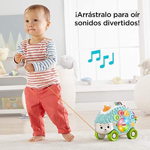 Fisher-Price Erizo Linkimals, Juguete interactivo bebés +9 meses (Mattel, GJB06) , color/modelo surtido