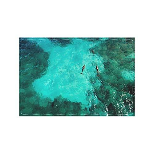 HJHJJ Rompecabezas Delfines Isla Mujeres Vista aérea Jugando Niños Adultos Rompecabezas Niños Educativo Intelectual Descompresión Divertido Juego Familiar