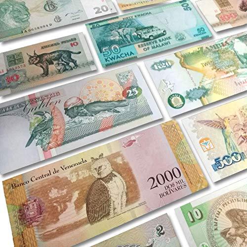 IMPACTO COLECCIONABLES Billetes del Mundo - Colección de Billetes - 17 Billetes Diferentes de Animales