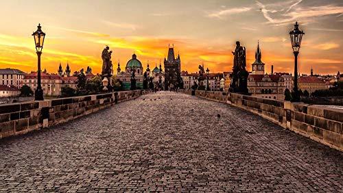 N\A Manualidades para Pintar Pintura por Numeros Adultos Niños Europa Praga República Checa Ciudades, Puente De Carlos Cuadro Lienzo DIY Pintura Al Óleo 40X50Cm