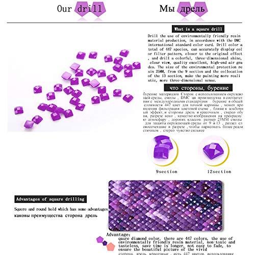 PYuKK 5D DIY「Barco en apuros」Pintura Diamante,Completo Taladro Arte Diamantes imitación Bordado Pegatinas,decoración artística con Sentido del diseño. -40x50cm