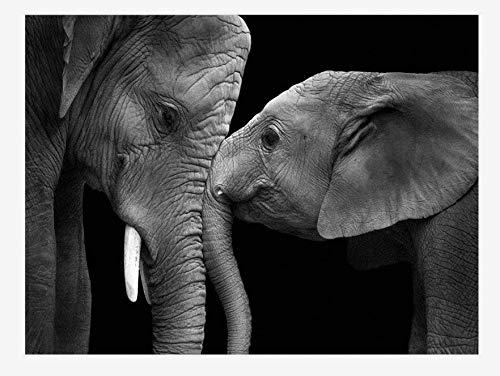 QNJY niños IQ Rompecabezas Rompecabezas 70x50cm 3d DIY Dos elefantes en blanco y negro Adultos Juego Creativo 1000 Piezas decoración del hogar