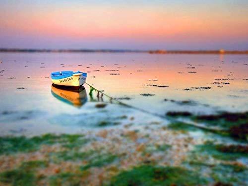 500 piezas de rompecabezas rompecabezas niños adultos barco olvidado en el lago decoración especial para el hogar